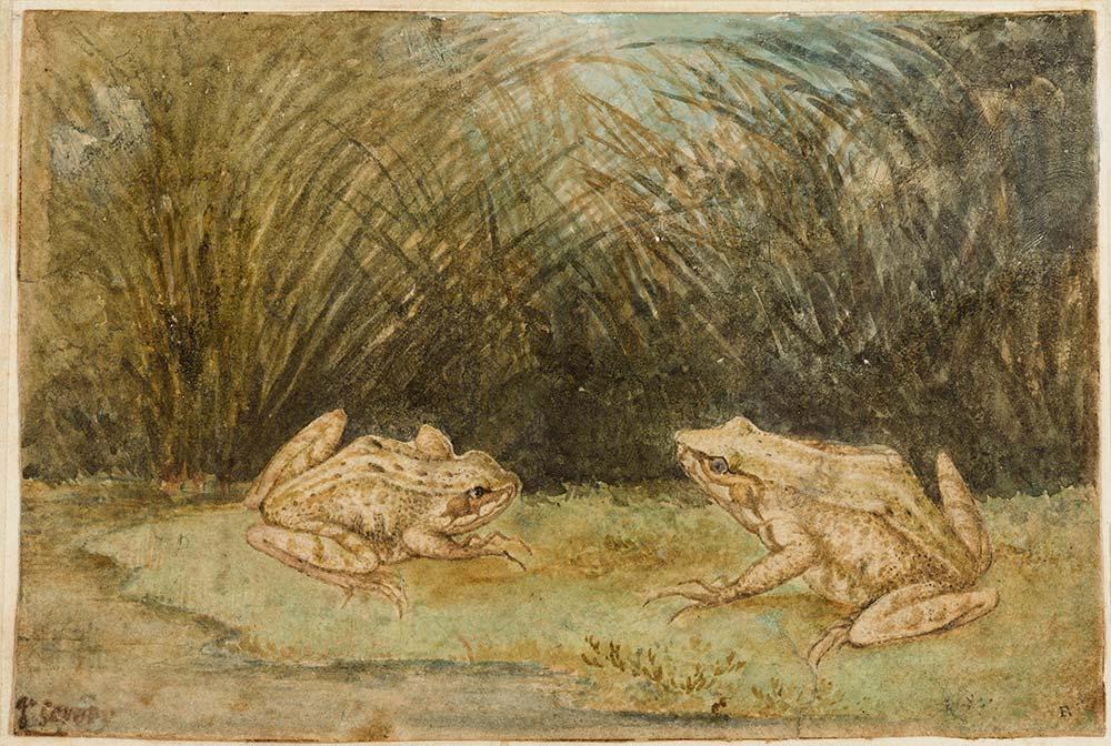 Oude tekeningen vakkundig gefotografeerd door Margareta Svensson